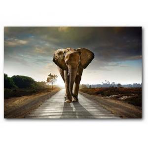 Maison Du Monde Cadre Elephant Idee Pour Cuisine